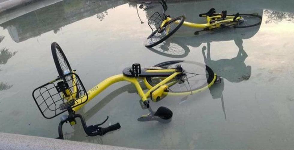 bicicletta ofo in acqua